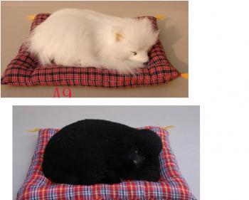 vente flash chien chat realiste sur coussin destockage. Black Bedroom Furniture Sets. Home Design Ideas
