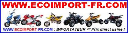 ecoimport13