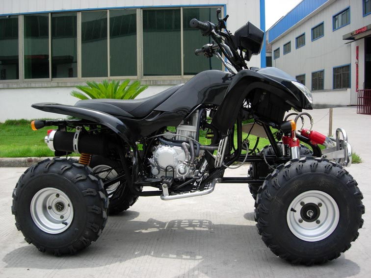 quad 200 cc predator homologue a 1290 euros ttc destockage. Black Bedroom Furniture Sets. Home Design Ideas