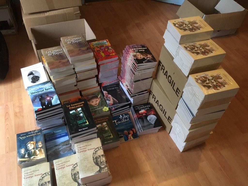nouveau lot de livres neufs et retours libraires destockage grossiste. Black Bedroom Furniture Sets. Home Design Ideas