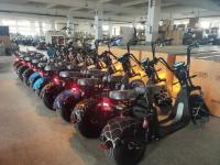Citycoco scooters électriques homologués