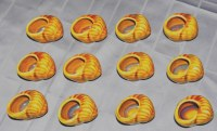 Déstockages  800 lot de 12 coquillier escargot