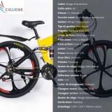 Vente en gros de cinq modèles différents de vélos
