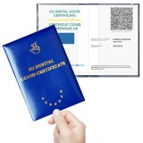 Lot 100 porte document pour certificat vaccination EU