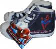 Basket Spider Man