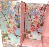 Parfums Eau de jasmin