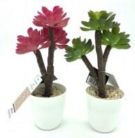 Plante artificielle succulente H23