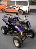 QUAD SHINERAY 250cc HOMOLOGUE 2 PLACES à 1649€ TTC