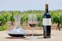Vendre du vin d'Espagne