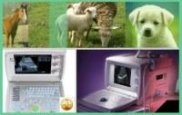 Materiel veterinaire echographe d' élévage