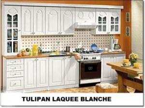 Cuisine Tulipan laquée blanche 3m20