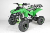 """Quad 125cc Warrior 7"""" automatique pour enfant"""