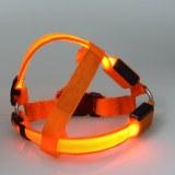 Harnais LED pour chien