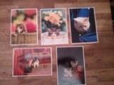 Lot de 10.000 cartes postales