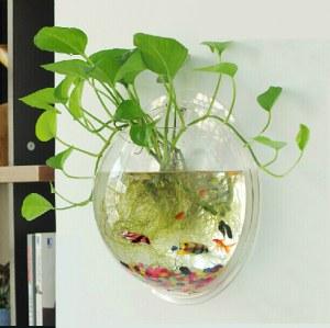 Aquarium (petit et grand modele)