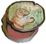 Boite marmotte en teck