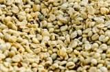 CAFE ROBUSTE OU ARABICA 0.95EUR/Kg