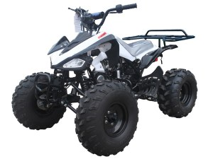 Kirest Fournisseur Quad Cheetah Tao Motors