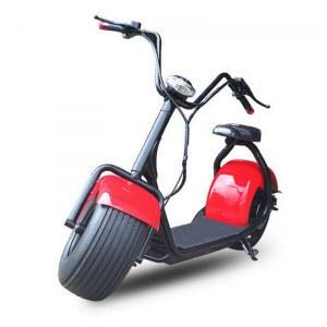 Scooter électrique Citycoco junior 800w 48v 12ah