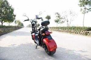 VIADGIO Scooter Electrique City Coco HOMOLOGUÉ 2 Places