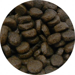 Croquette chiot sans céréales made in France