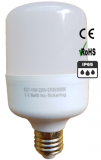Lampe LED IP65 type E27 10 watts dimmable