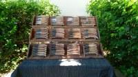 Lot de 100 couteaux de poche manche en bois