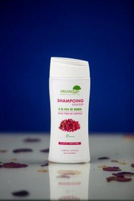 Shampoing en gros