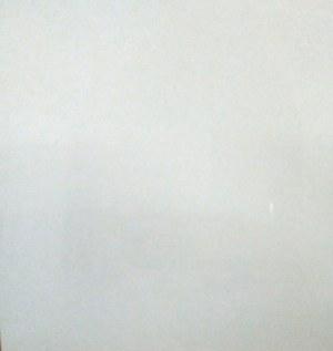 Carrelage 80x80cm pleine masse rectifié polis Brillant Blanc