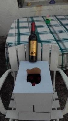 Lot revendeur 1000 bouteilles rouge