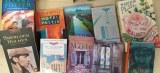 Lots de romans en anglais