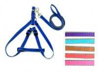 Ensemble Cléo harnais et laisse 1m20 nylon coloris assortis à partir de 2,03€ HT
