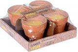 Bougie anti-moustiques citronnelle pot terracotta Ø 7cm x 4 à partir de 4,31€ HT
