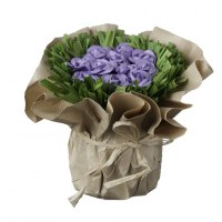 Carton de 6 - 2 Bouquets de 11 Roses