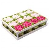 Carton de 4 - Cagette de 12 bouquets de roses