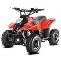 Quad Orion Bigfoot 110 cc