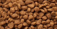 Croquette pour chien 24% de viande