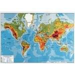 Carte du monde planisphère