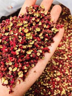 Producteur de poivre du Sichuan