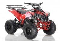 Quad ORION Sportrax 125cc