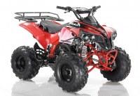 Quad ORION Sportrax 125cc