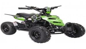 Eco Reptil 6 pouces 800W