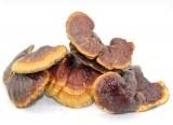 Grossiste exportateur de champignons séchés