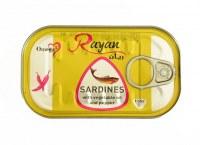 Bulk Moroccan Sardines,