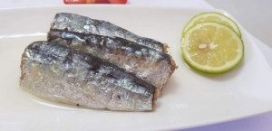 Bulk Moroccan Sardines wholesale,